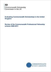evaluation-review-professional-fellowships