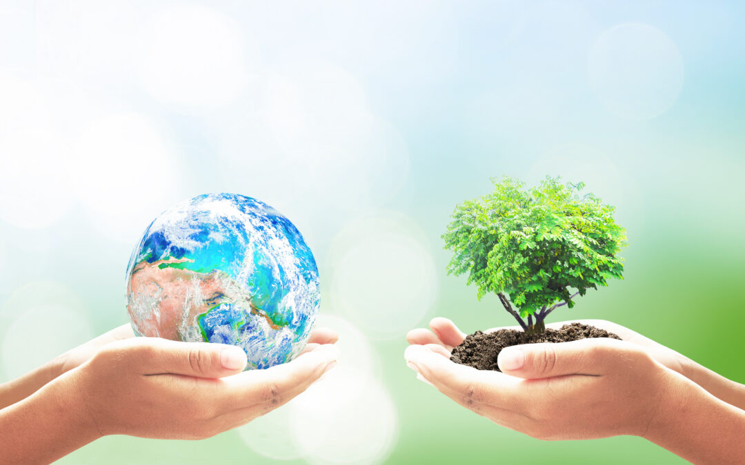 Two pair of hands, one holding the Earth and the second holding a tree